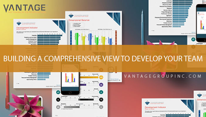 Building a comprehensive view to develop your team!